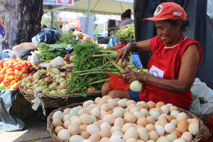Feira-reforma-agraria